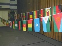 African Region Streamers-0