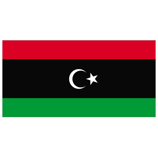 Libya -3' x 5' Indoor Flag-0