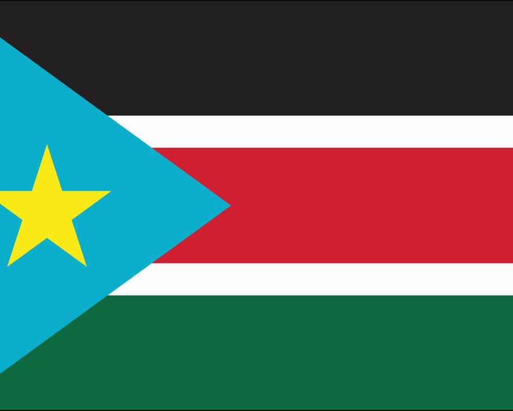 South Sudan Flag-3' x 5' Indoor Flag-0
